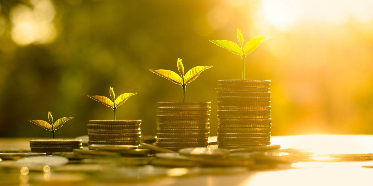 سرمایه گذاری و پول